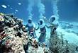 Tour đi bộ ngắm san hô dưới đáy biển đảo Cù Lao Chàm