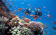 DN43: Tour Du Lịch Đà Nẵng- Biển Mỹ Khê- Huế- 4N3Đ