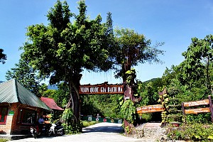 Hành Trình 2 Ngày: Đà Nẵng  - Vườn Quốc Gia Bạch Mã