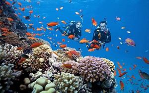 DN43: Biển Mỹ Khê- Huế- 4N3Đ