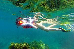 Tour Du Lịch Câu Cá - Lặn Ngắm Đại Dương và Sinh Vật Biển Bán Đảo Sơn Trà