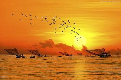 Nên chọn một công ty lữ hành uy tín, cho chuyến hành trình khám phá Đà Nẵng, 2018