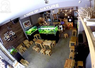 Những Quán Cafe Độc Đáo Hút Khách Tại Đà Nẵng