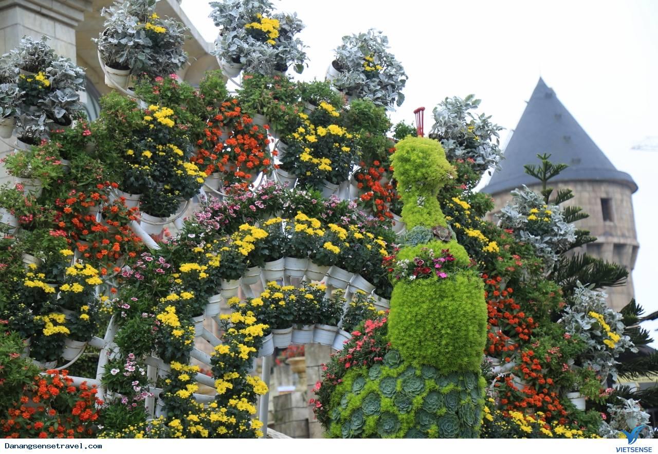 Du lịch Đà Nẵng- Bà Nà ngắm những loài hoa đua nở - Ảnh 1