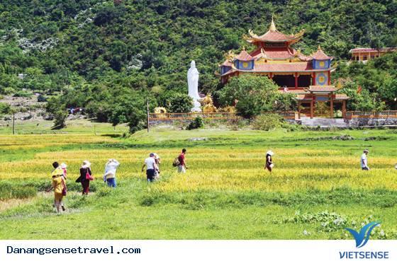 Du lịch Đà Nẵng khám phá Cù Lao Chàm- chùa Hải Tạng