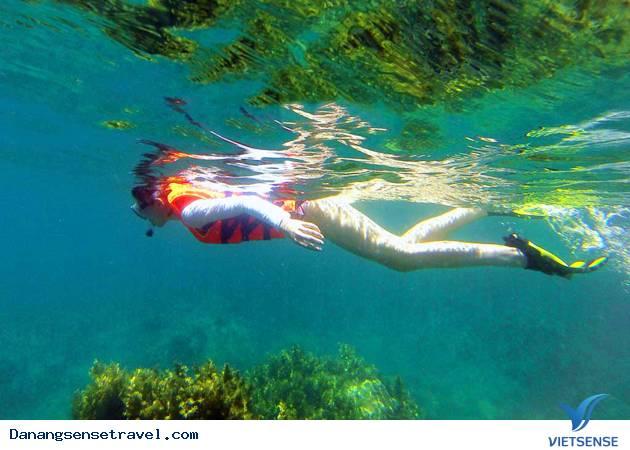 Tour Du lịch câu cá và lặn ngắm đại dương tại Bán Đảo Sơn Trà