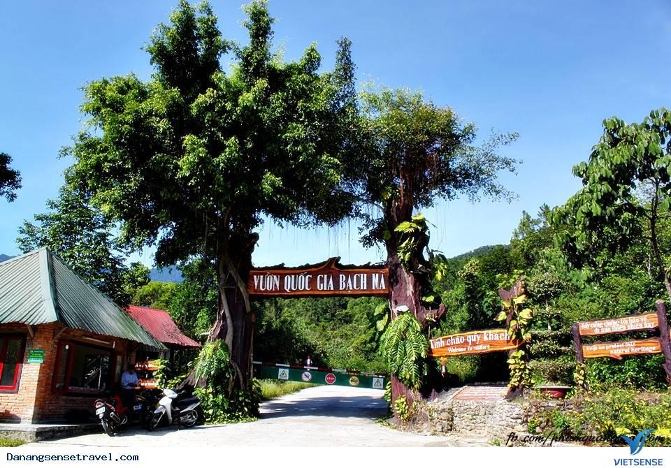 Tour Du Lịch Đà Nẵng 2 Ngày- Đà Nẵng Vườn Quốc Gia Bạch Mã