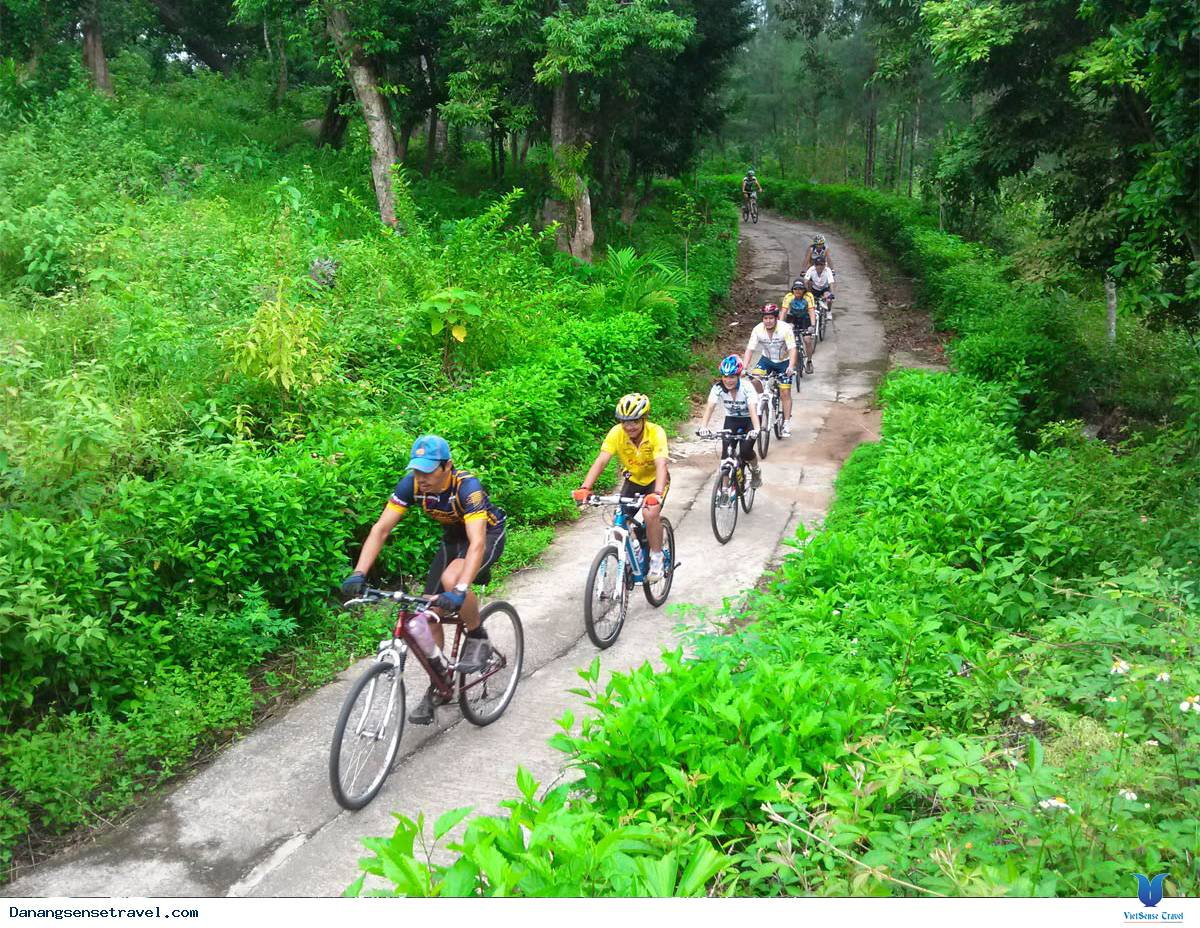 Tour xe đạp khám phá khu bảo tồn thiên nhiên Sơn Trà